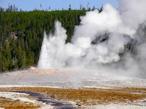 Nature Wonders Yellowstone National Park Wyoming. Nature wonders. Volcanoes and hot springs in Yellowstone National Park. Wyoming, United States Royalty Free Stock Images