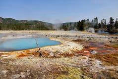 Nature Wonders, Yellowstone National Park, Wyoming. Nature wonders. Volcanoes and hot springs in Yellowstone National Park. Wyoming, United States Royalty Free Stock Photo