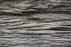Nature wooden texture background Royalty Free Stock Image