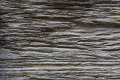 Nature wooden texture background. Without green leaf Royalty Free Stock Photos
