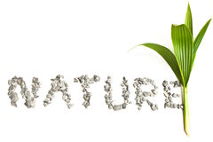 Nature word art  from a stone. Stock Photo