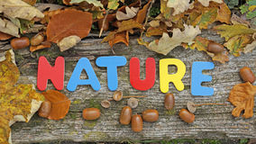 Nature written in Autumn Royalty Free Stock Photo