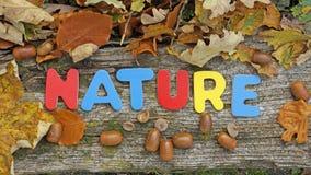 Nature written in Autumn Royalty Free Stock Photo