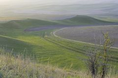 Cultivated field on the hill. See the sun before sunset. Nature Zhetysu. Kazakhstan stock photo