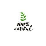 100% naturel Calligraphie moderne de brosse Lettrage manuscrit d'encre illustration de vecteur