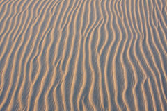 Naturel sand background Royalty Free Stock Image