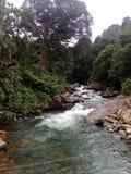 Naturel sri-lankais Images libres de droits