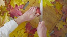 Naturemorte di autunno Cuoco unico che taglia un granato archivi video