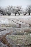 Naturen är i rimfrost Arkivbilder