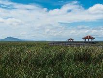 Naturen är lite varstans, Khao Sam Roi Yot, Prachuap Khiri Khan, Arkivbilder