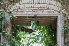 Naturen återtar en övergiven förstörd byggnad royaltyfria foton