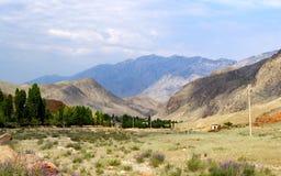 Naturen av Kirgizistan Royaltyfri Foto