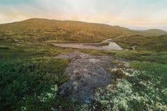 Naturen av Norge Flod i bergen Flod i bergig terräng Landskap i Norge på soluppgång nordlig natur arkivbild