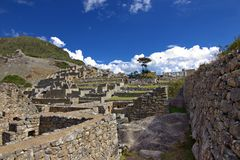 Naturen av Peru Royaltyfri Fotografi