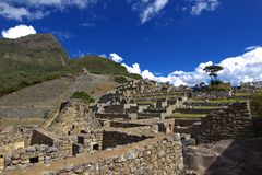 Naturen av Peru Arkivfoto