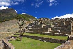 Naturen av Peru Royaltyfria Bilder