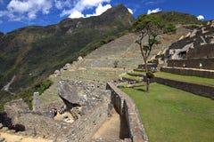 Naturen av Peru Fotografering för Bildbyråer