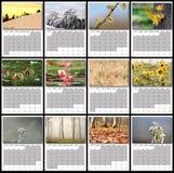 Naturen avbildar kalenderåret 2016 fotografering för bildbyråer