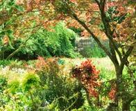 Naturen besitzen Garten lizenzfreies stockbild
