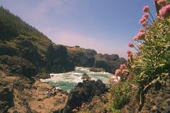 Naturen inspirerar Fotografering för Bildbyråer