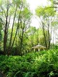 Naturen parkerar högväxta träd och paviljongen Arkivfoton