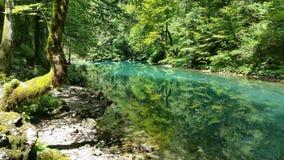 Naturen parkerar Risnjak Kroatien Royaltyfri Foto