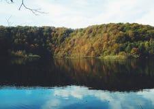 Naturen reflekterar sig Arkivbilder