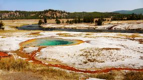 Naturen undrar den Yellowstone nationalparken Wyoming Royaltyfri Bild