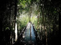 Naturepark fotos de archivo