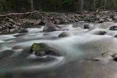 Naturer som bedövar skärm Royaltyfri Foto
