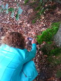 Natures picture. Woman makes photo of nature with her smartphone Royalty Free Stock Photography