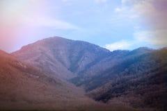Naturescape do dia bonito vibrante nas madeiras fumarentos do parque nacional das montanhas imagem de stock