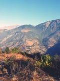 Natureview стоковая фотография rf