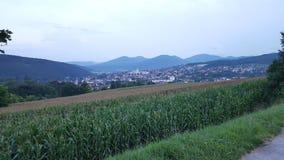 Natureza Áustria Berndorf fotos de stock