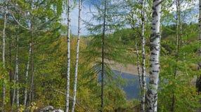 Natureza Fotos de Stock