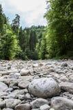 Natureza alemão Imagem de Stock