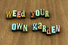 Natureza amável da virtude da paciência da sabedoria da ajuda do jardim da erva daninha imagem de stock