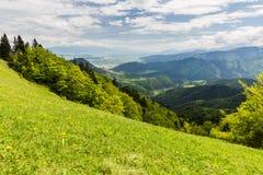 Natureza ao longo da maneira do ciclismo de Malino Brdo a Revuce em Slova Fotos de Stock
