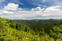 Natureza ao longo da maneira do ciclismo de Malino Brdo a Revuce em Slova Foto de Stock