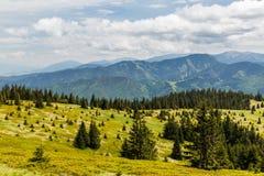 Natureza ao longo da maneira do ciclismo de Malino Brdo a Revuce em Slova Imagem de Stock