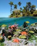 Natureza bonita Imagem de Stock