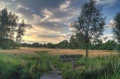 Natureza bonita de observação Fotografia de Stock