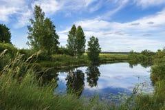 Natureza bonita de Rússia fotos de stock