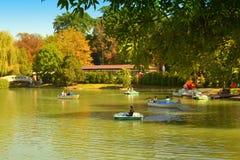 Natureza bonita do parque do outono Foto de Stock