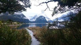Natureza bonita em Milford Sound Fotografia de Stock