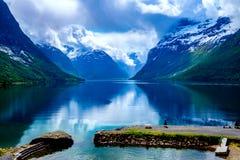Natureza bonita Noruega Imagem de Stock