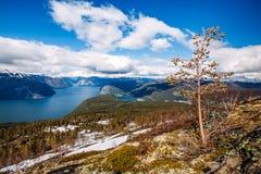 Natureza bonita Noruega - Sognefjorden Fotos de Stock
