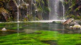 Natureza cênico da cachoeira bonita e associação da água fresca com seaplant verde filme