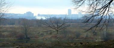 Natureza & a cidade Foto de Stock Royalty Free