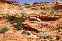 Natureza clássica de América - Mt na garganta do vale Imagem de Stock Royalty Free